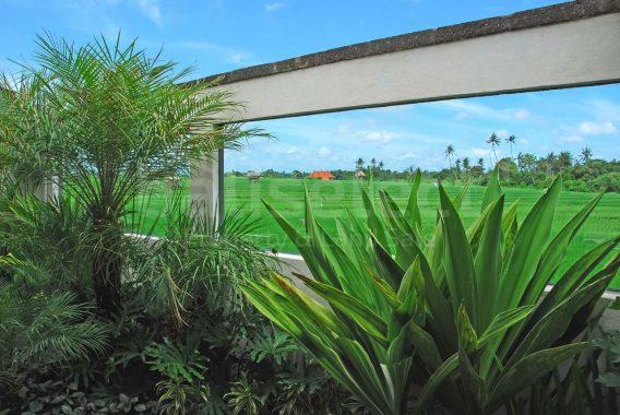 Villa Saba Berawa -15 EDs1