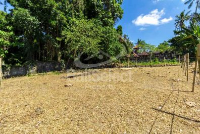 Land For Sale in Mengwi