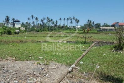 Land For Sale in Gianyar