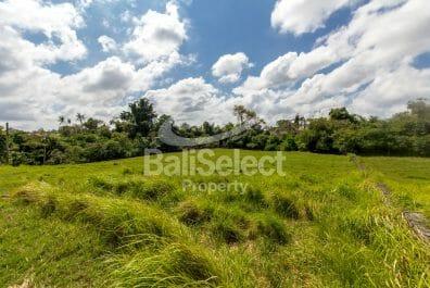 Freehold Land in Berawa