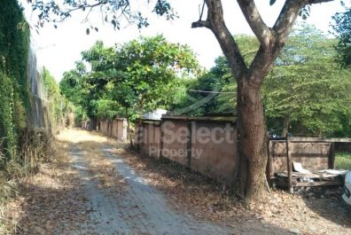 Freehold Land in Petitenget