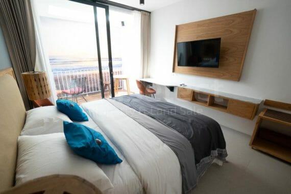1 Bedroom Apartment in Canggu