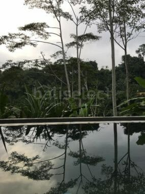 Freehold Villa with magnificent view in Ubud