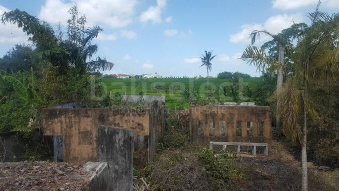 Greenbelt View Freehold Land in Tiying Tutul