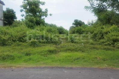 Leasehold Land in Canggu