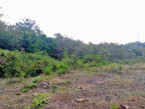 Freehold Land in Nusa Dua Near to the Beach