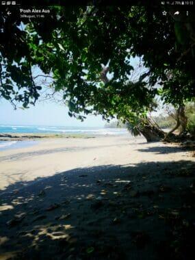 Beachfront Land For Sale in Jembrana